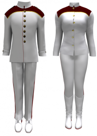 Honor Guard Uniform.png